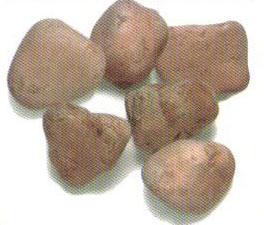 Piedra de mármol de canto rodado Bolo Rojo